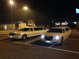limousine kl